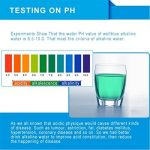 Wellblue_Alkaline_Filter_1-PC-7T